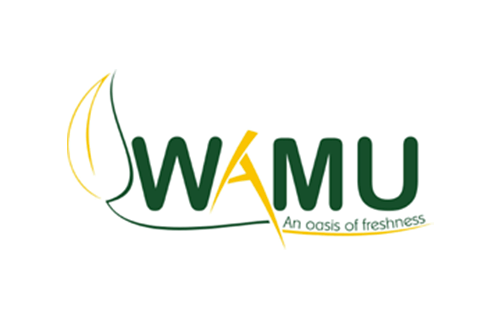 WAMU INVESTMENTS Limited